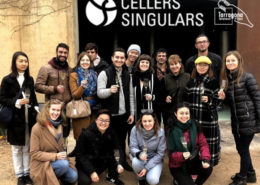 winetour 3.0 cellers singulars